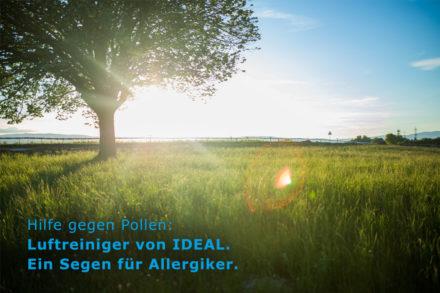Hilfe gegen Pollen!